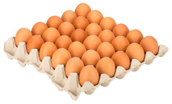 Eier Bodenhalt. Gr. M (30 Stk Pack)
