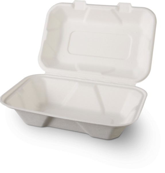 """BFG"" Lunchbox groß (23x16x7.7cm)"